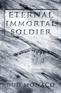 Book cover design Anna Vinn